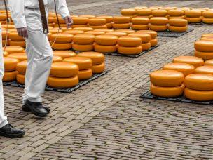 Alkmaar sýrový trh